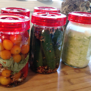 Lacto-Fermentation 101: Everything You'll Need to Ferment Vegetables at Home! Fermentation | Vegetables | Sauerkraut | Pickling | Pickles | Canning | Preserving | Probiotics | Healthy Foods | Leaky Gut | Gut Health
