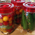 Fermentation 101: Everything You Need to Ferment At Home