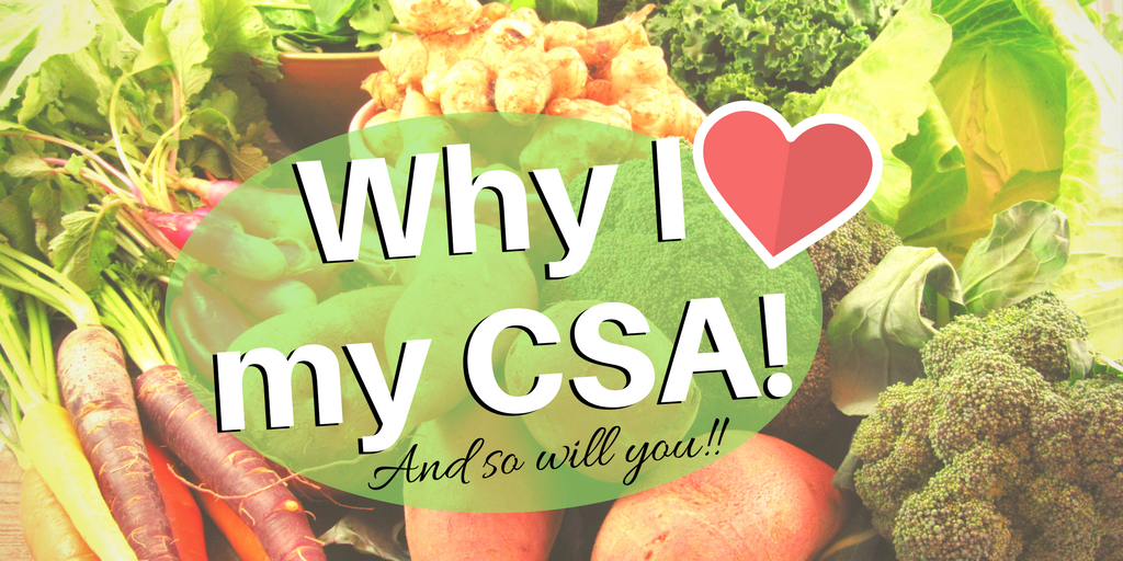 Why I LOVE My CSA: Fresh Roasted Carrots | Sustainable Living | Eating Seasonally | Seasonal Vegetables | Organic Produce | Community Supported Agriculture | Eating Local | Buying Local | Homestead | Homesteading