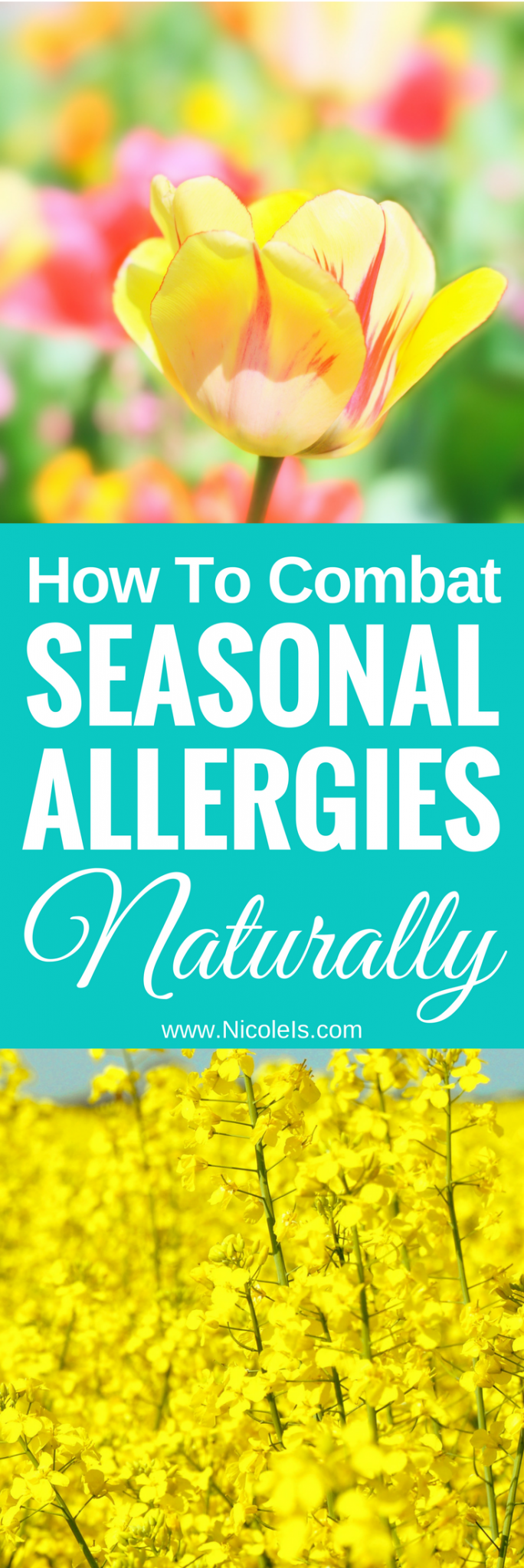 How to Combat Seasonal Allergies Naturally | Nicole Is ... El Natural | www.NicoleIs.com | Seasonal Allergies | Holistic Remedies | Home Remedies | Allergy Relief | All Natural Remedies | Spring Allergies | Hay Fever | Natural Allergy Remedies